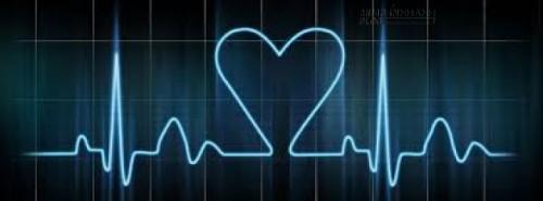 Cuộc sống con người tựa như nhịp tim trên máy điện đồ, khi mà những ngày qua đi quá bình lặng thì chứng tỏ lúc đó trái tim bạn đã ngừng đập