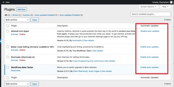 Tự động update plugin WordPress