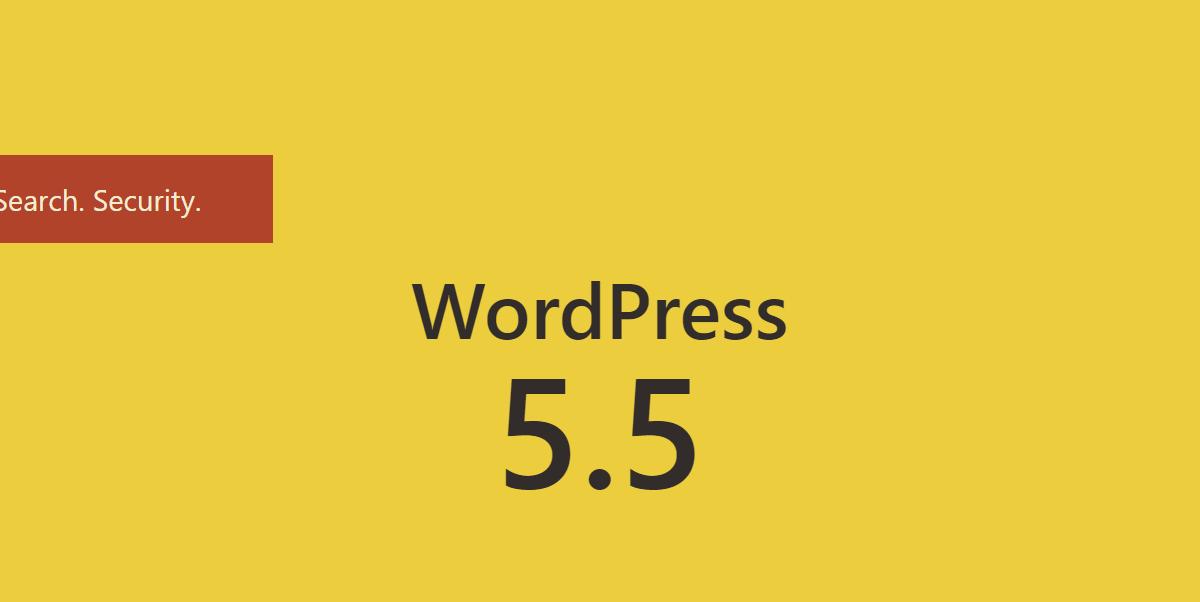 Phiên bản WordPress 5.5 và nhiều điều thú vị